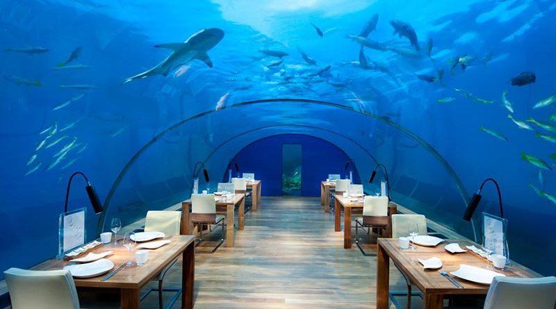 ว่ายน้ำไม่เป็นร้องว๊าว! 10 สถานที่น่าเช็คอิน ท่องโลกใต้น้ำกลางทะเลแบบไม่ต้องกลัวเปียก