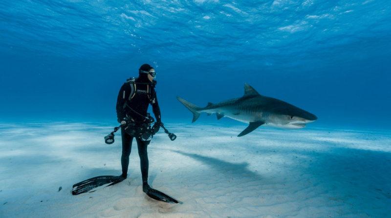 ทรงพลังจนร้องว๊าว! 52 สุดยอดภาพแห่งปี 2016 จาก National Geographic