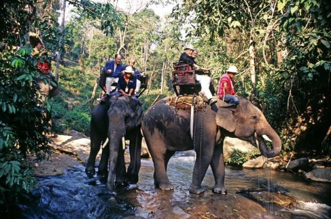 ขี่ช้างเข้าป่า สังขละบุรี