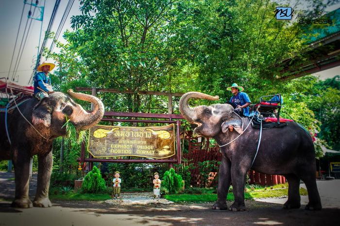 หมู่บ้านช้างดำเนินสะดวก ราชบุรี
