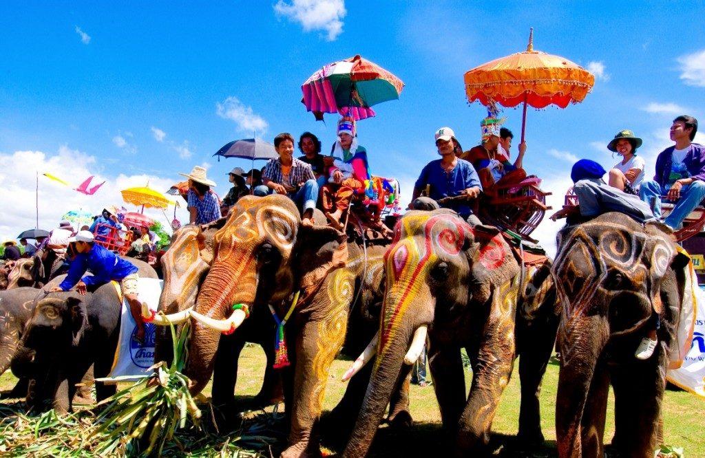 หมู่บ้านช้างเลี้ยงใหญ่ที่สุดในโลก ที่บ้านกระโพ-ตากลาง สุรินทร์