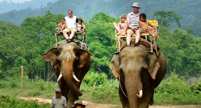Elephant Trek Khao sok สุราษฎร์ธานี