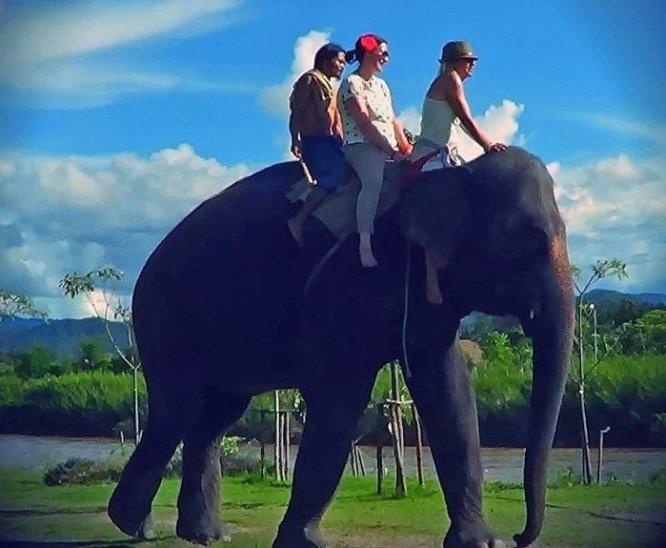 Thom's Pai Elephant Camp ปาย