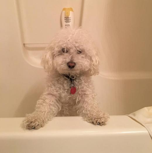 quincyvines-เหนอะตัวจังเลยอาบน้ำให้หน่อยจ้า