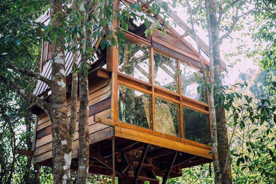 บ้านในหมง Treehouse จ.ระนอง2