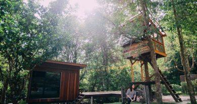 Tarzan Lifestyle 5 ที่พักบ้านต้นไม้ ชาตินี้ต้องไปปีนซักครั้ง