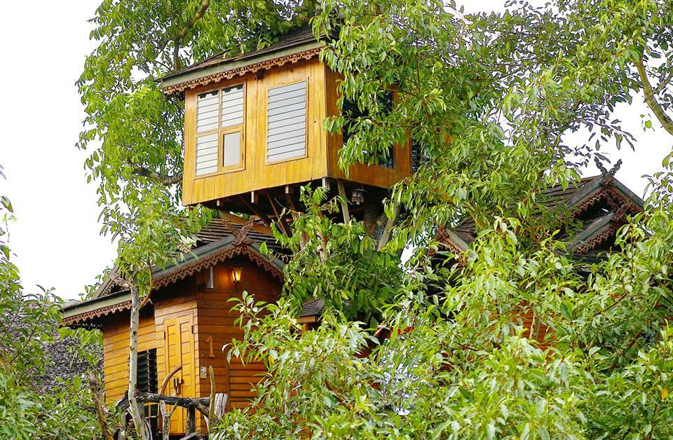 Pai Treehouse Resort อำเภอปาย จังหวัดแม่ฮ่องสอน1