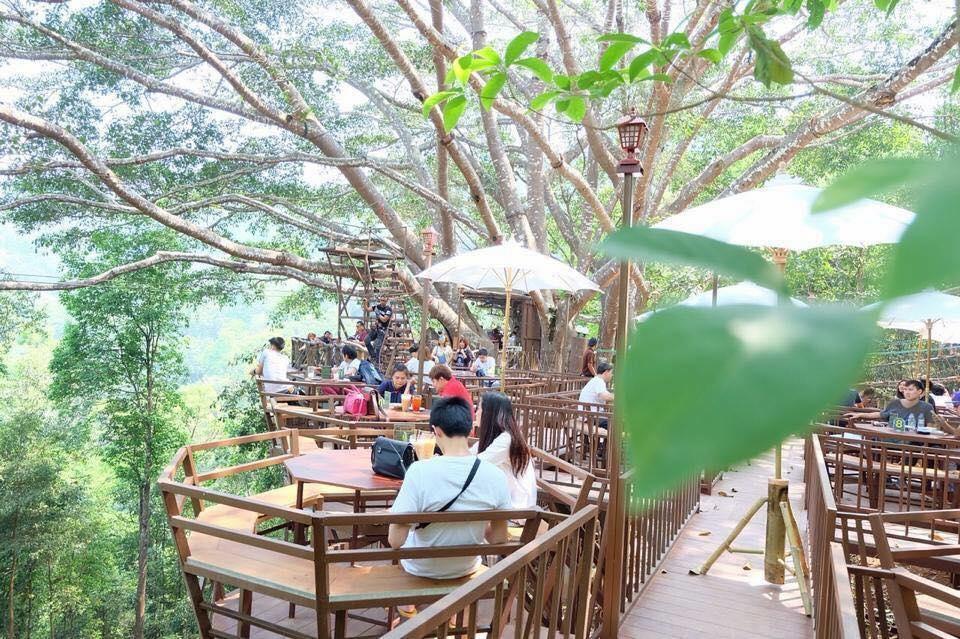 The Giant Chiangmai จังหวัดเชียงใหม่3