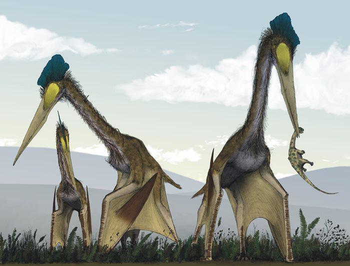 ราชาสัตว์ปีก Quetzalcoatl