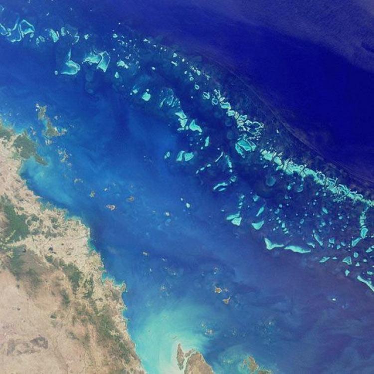 เจ้าแห่งน่านน้ำ โพไซดอนแห่งปาการัง The Great Barrier Reef