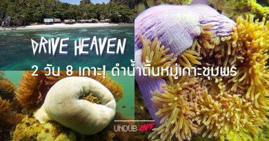 2 วัน 8 เกาะ! รีวิวดำน้ำตื้นหมู่เกาะชุมพร สุดยอดแหล่งดูปะการัง สวรรค์ใต้ทะเลอ่าวไทย