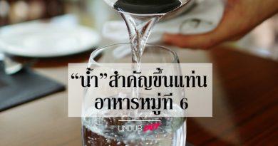 """เหตุผลที่ """"น้ำ"""" สำคัญ ขึ้นแท่นเป็นอาหารหมู่ที่ 6"""
