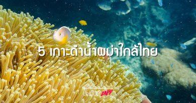 ล้มตัวนอนทราย จุ่มกายดูปะการัง 5 เกาะพม่า(ดำน้ำ)ใกล้ไทย ไปเมื่อไหร่ชื่นใจทุกที