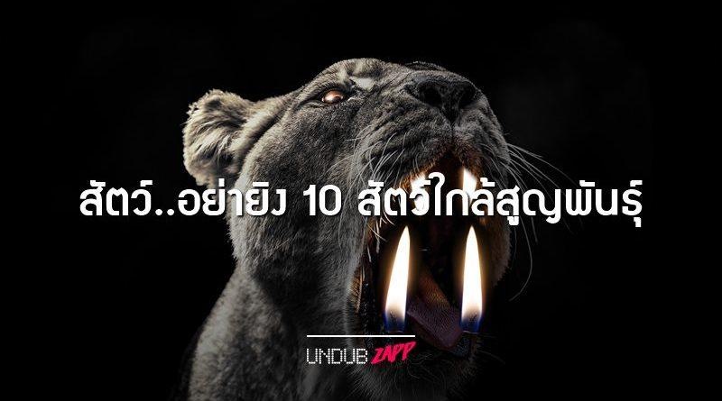 อย่ายิงสัตว์!! 10 สัตว์โลกสวยงาม หายาก ที่ใกล้สูญพันธุ์