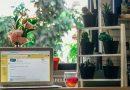 บ้านหลังที่ 2 มนุษย์ออฟฟิศ! 9 วิธีจัดโต๊ะทำงาน สายสุขภาพ ทำงานละมุน อารมณ์ดี