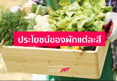 ผักให้สารอาหารประเภทใด? 4 ข้อควรรู้ประโยชน์ผักเพื่อสุขภาพ